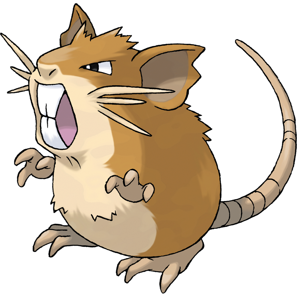 Raticate (Pokémon)