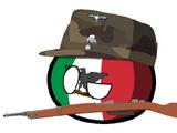 Italian Social Republicball
