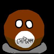 Sentineleseball