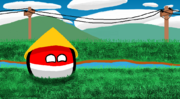 A picture of Indonesiaball seen smiling with a background of grass and electric poles.
