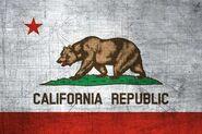 California-Flag-US-State-Metal-XL1-e1481070244143