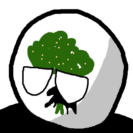 Lecceball