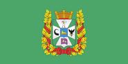 Gomel flag