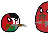 2020-2021 Western Saharan clashes