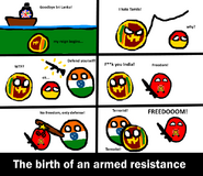Birth of an armed resistance