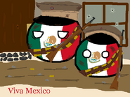Viva Mexico by A Dust Bin