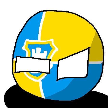 Zhytomyrball