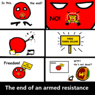 End of an armed resistance