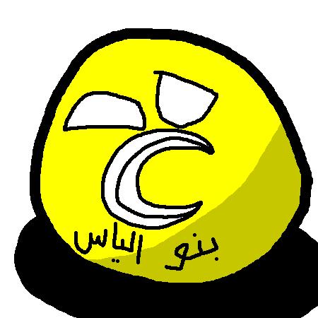 Banu Ilyasball