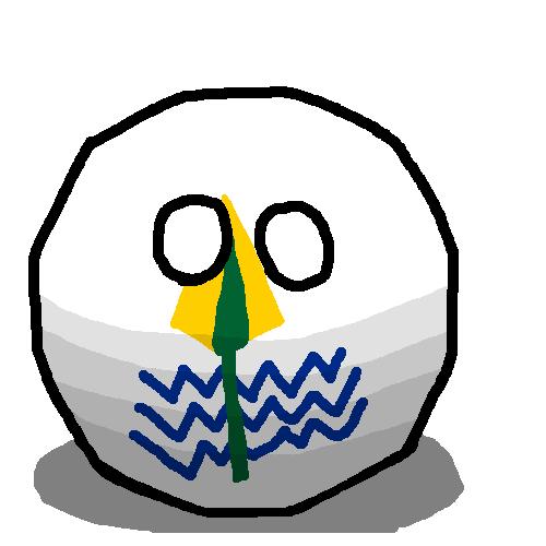 New Valleyball