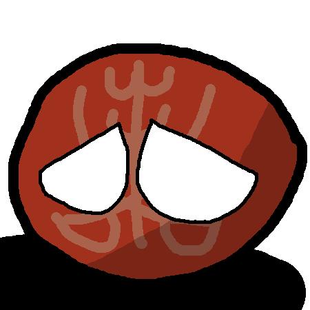 Dhrol Stateball