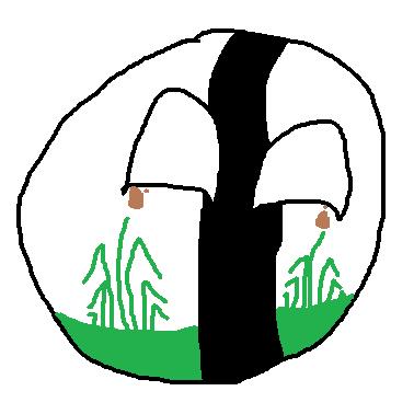 Šenovball