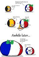 FrenchSudanFlag