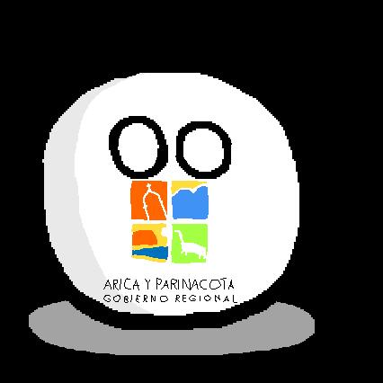 Arica y Parinacotaball