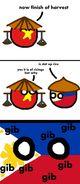 Gib rice