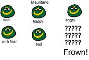 Emotions of Mauritane