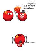Gib erection
