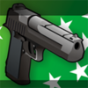 Issue Gun Pos.png