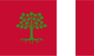 The Flag of The Democratic Republic of Trexizia