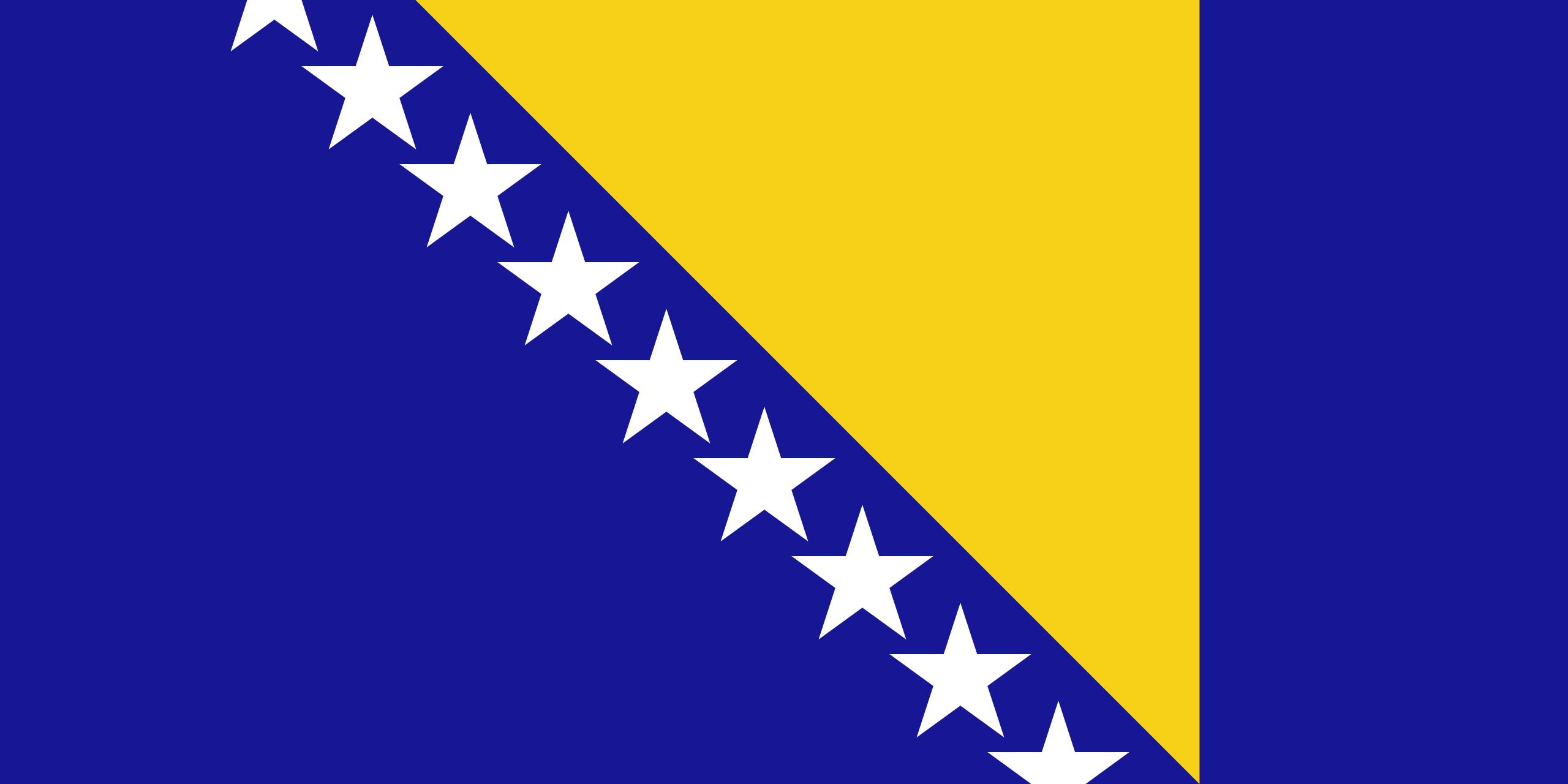 Bosnia and Herzegovina Flag.png