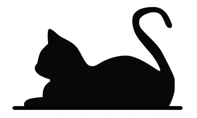 Catsby