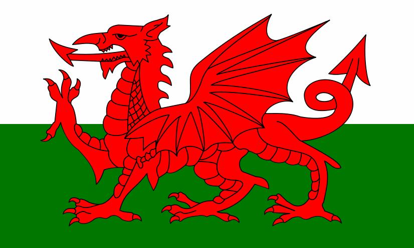 Royal Dragons