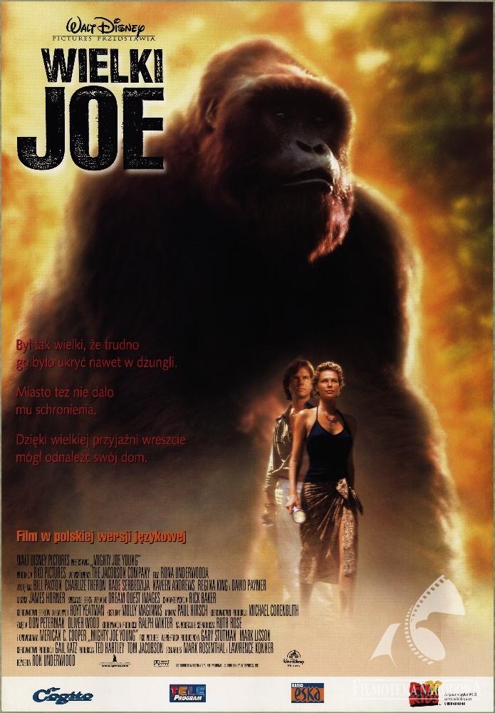 Wielki Joe