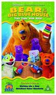 Bear In The Big Blue House- Tidy Time With Bear (UK) VHS