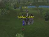 Savador Castle