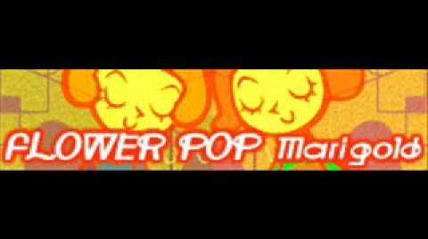 FLOWER_POP_「Marigold」