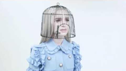 This Birdcage