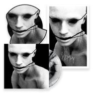 IDM-BUNDLEpng 720x