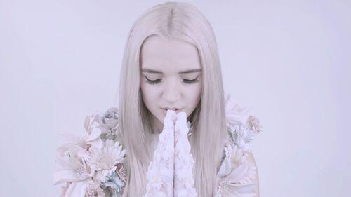 Pray with poppy.jpg