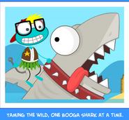Sharktoothphoto3