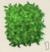 Topiary Cube Icon.png
