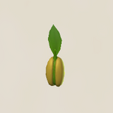 Wheat Seeds Icon.png