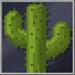 Cactus Block