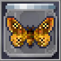 Stud Moth