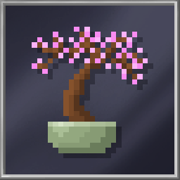 Cherry Bonsai