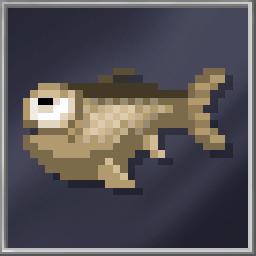 Dumb Fish (Huge)