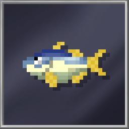 Kingfish (Large)