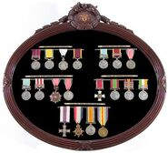 Bunch of Medals