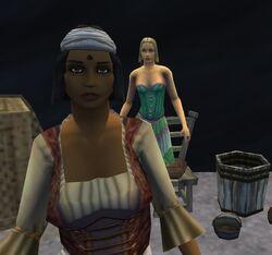 Screenshot 2011-01-29 15-34-53.jpg