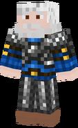 Ned Armor Skin