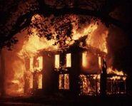Dallasfire