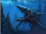 The Kraken (senior)