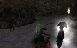 Screenshot 2011-02-27 13-37-05.jpg