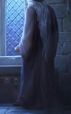 Dumbledore B4C35M1 background.jpg