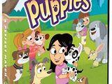 Pound Puppies: A Perfect Match