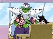 Piccolo & Pan